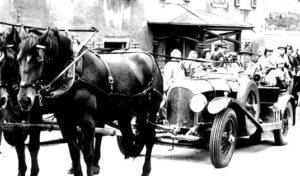 Pferde_Auto